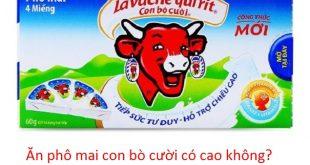 an-pho-mai-con-bo-cuoi-co-cao-khong